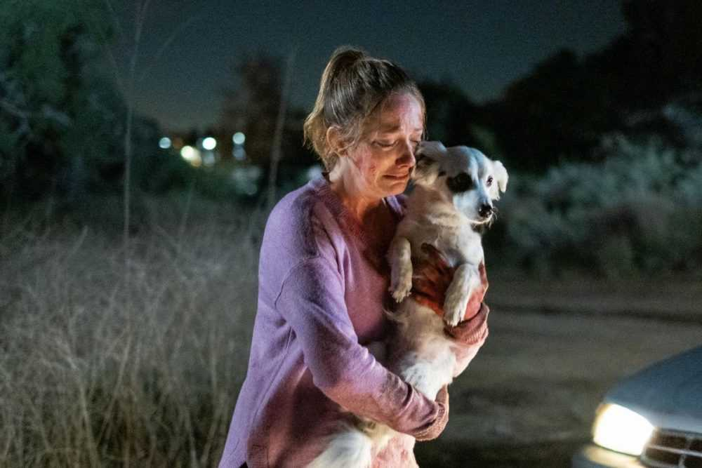 Maggie (Judy Greer) holds Reuben (Chico the Dog)