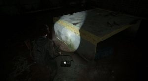 the-last-of-us-part-2-artifact-document-locations-39